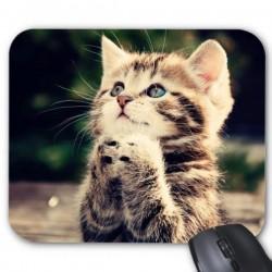 Tapis de souris chat ref 2574