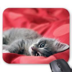 Tapis de souris Chaton rouge réf 3662