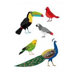 Stickers Autocollants déco Planche A3 Oiseaux réf 189