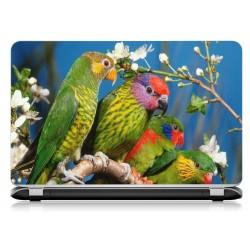 Stickers Autocollants ordinateur portable PC oiseaux