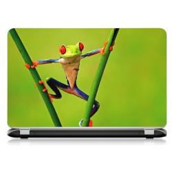 Stickers Autocollants ordinateur portable PC grenouille
