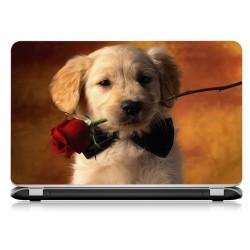 Stickers Autocollants ordinateur portable PC chien