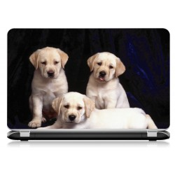 Stickers Autocollants ordinateur portable PC labrador