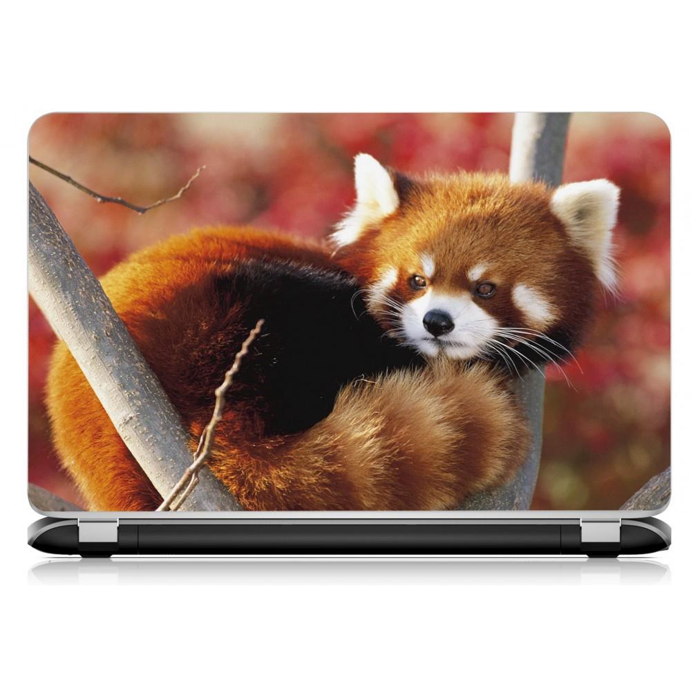 Stickers Autocollants Ordinateur Portable Pc Panda Roux