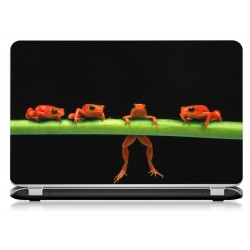Stickers Autocollants ordinateur portable PC grenouille