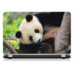Stickers Autocollants ordinateur portable PC panda