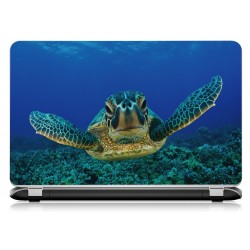 Stickers Autocollants ordinateur portable PC tortue