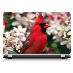 Stickers Autocollants ordinateur portable PC oiseau