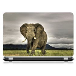 Stickers Autocollants ordinateur portable PC elephant